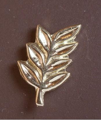 Pin masonic din aur - Acacia